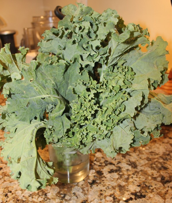 Tired of greens going limp? Cut off the ends and put them in a cup of cold water in the fridge!
