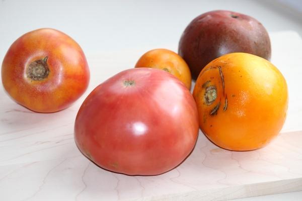 Beautiful heirloom tomatoes