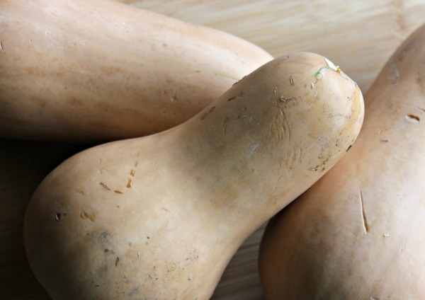 Butternut Squash Closeup